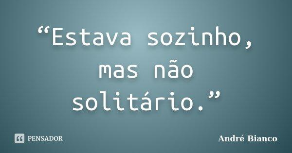 """""""Estava sozinho, mas não solitário.""""... Frase de André Bianco."""