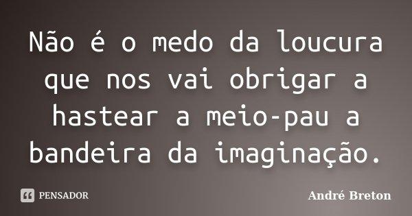 Não é o medo da loucura que nos vai obrigar a hastear a meio-pau a bandeira da imaginação.... Frase de André Breton.