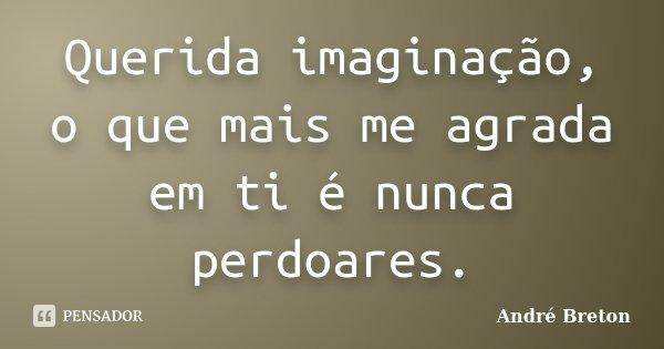 Querida imaginação, o que mais me agrada em ti é nunca perdoares.... Frase de André Breton.