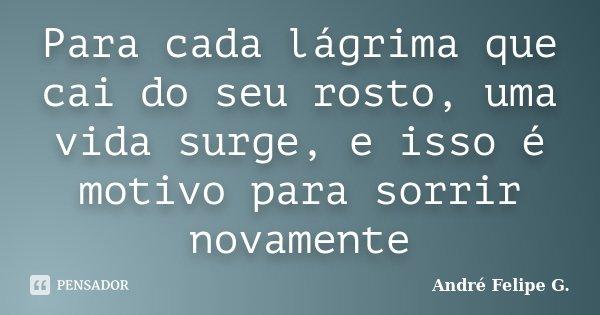 Para cada lágrima que cai do seu rosto, uma vida surge, e isso é motivo para sorrir novamente... Frase de André Felipe G..
