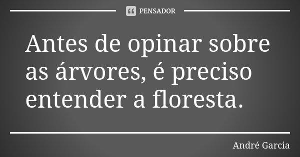 Antes de opinar sobre as árvores, é preciso entender a floresta.... Frase de André Garcia.