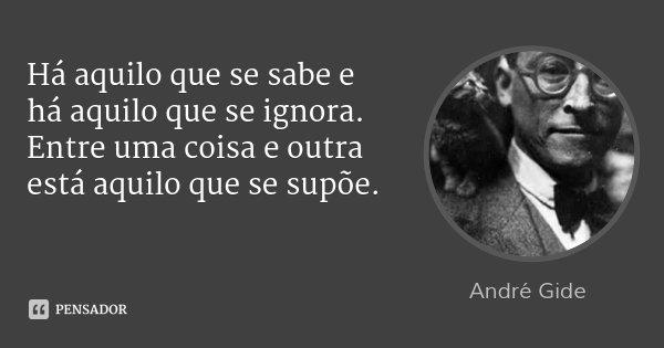 Há aquilo que se sabe e há aquilo que se ignora. Entre uma coisa e outra está aquilo que se supõe.... Frase de André Gide.