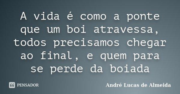 A vida é como a ponte que um boi atravessa, todos precisamos chegar ao final, e quem para se perde da boiada... Frase de Andre Lucas de Almeida.