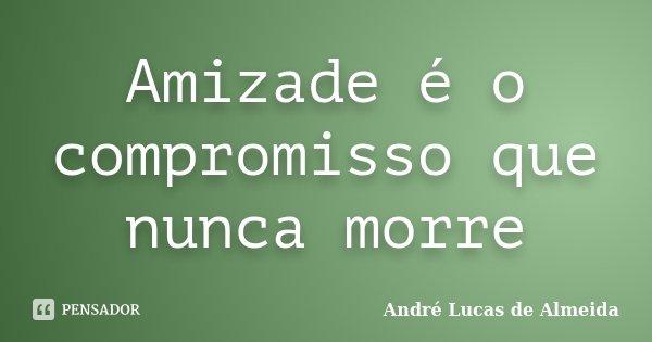 Amizade é o compromisso que nunca morre... Frase de Andre Lucas de Almeida.