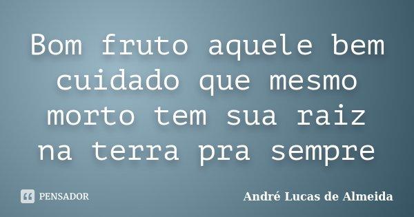 Bom fruto aquele bem cuidado que mesmo morto tem sua raiz na terra pra sempre... Frase de Andre Lucas de Almeida.