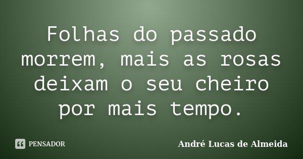 Folhas do passado morrem, mais as rosas deixam o seu cheiro por mais tempo.... Frase de Andre Lucas de Almeida.