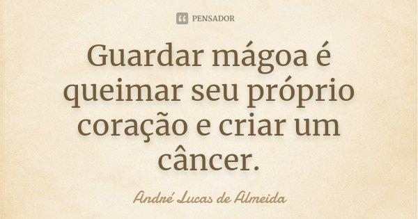 Guardar magoa, é queimar seu proprio coração, e criar um cancer.... Frase de André Lucas de Almeida.
