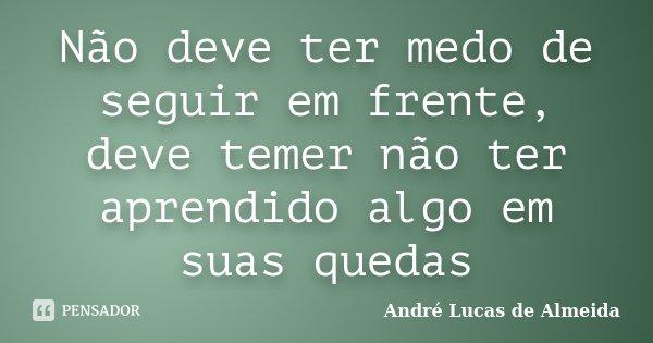 Não deve ter medo de seguir em frente, deve temer não ter aprendido algo em suas quedas... Frase de Andre Lucas de Almeida.