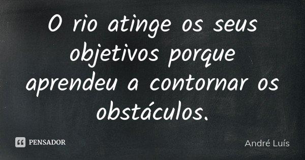 O rio atinge os seus objetivos porque aprendeu a contornar os obstáculos.... Frase de André Luis.
