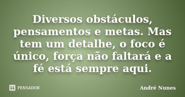 Diversos obstáculos, pensamentos e metas. Mas tem um detalhe, o foco é único, força não faltará e a fé está sempre aqui.... Frase de André Nunes.