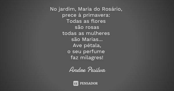 No jardim, Maria do Rosário, prece à primavera: Todas as flores são rosas todas as mulheres são Marias... Ave pétala, o seu perfume faz milagres!... Frase de Andre Pesilva.