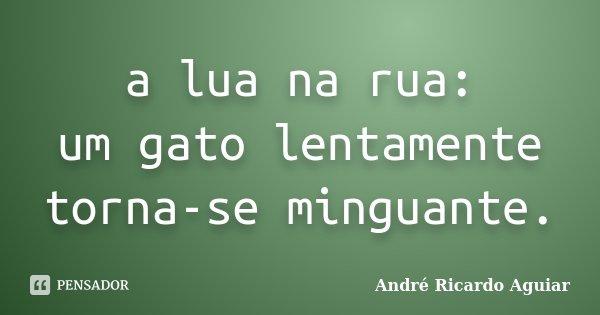 a lua na rua: um gato lentamente torna-se minguante.... Frase de André Ricardo Aguiar.