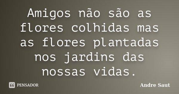 Amigos não são as flores colhidas mas as flores plantadas nos jardins das nossas vidas.... Frase de andré Saut.