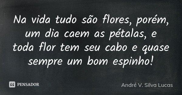 Na vida tudo são flores, porém, um dia caem as pétalas, e toda flor tem seu cabo e quase sempre um bom espinho!... Frase de André V. Silva Lucas.