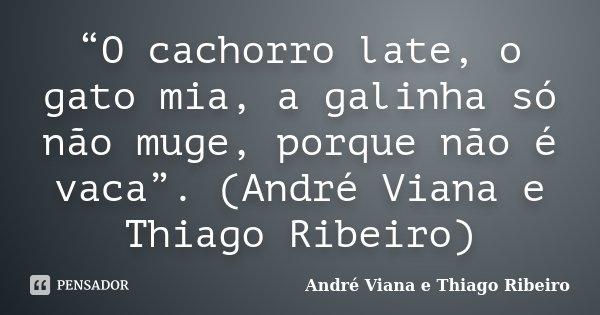"""""""O cachorro late, o gato mia, a galinha só não muge, porque não é vaca"""". (André Viana e Thiago Ribeiro)... Frase de (André Viana e Thiago Ribeiro)."""