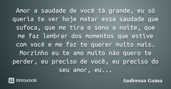 Amor A Saudade De Você Tá Grande, Eu... Andressa Gama
