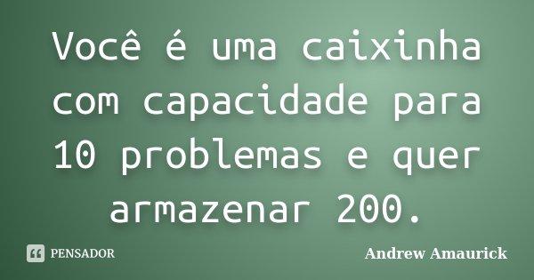 Você é uma caixinha com capacidade para 10 problemas e quer armazenar 200.... Frase de Andrew Amaurick.