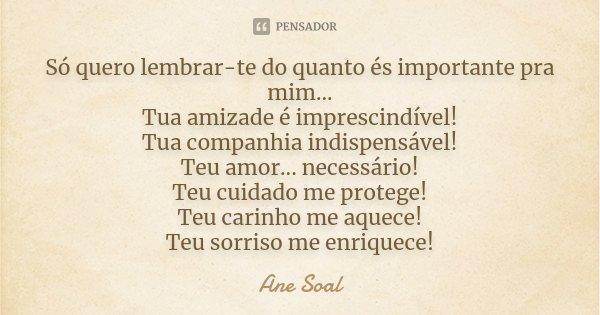 Só quero lembrar-te do quanto és importante pra mim... Tua amizade é imprescindível! Tua companhia indispensável! Teu amor... necessário! Teu cuidado me protege... Frase de Ane Soal.