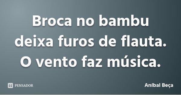 Broca no bambu deixa furos de flauta. O vento faz música.... Frase de Aníbal Beça.