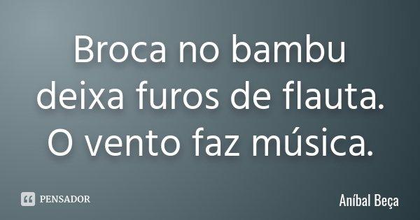 Broca no bambu deixa furos de flauta. O vento faz música.... Frase de Anibal Beça.