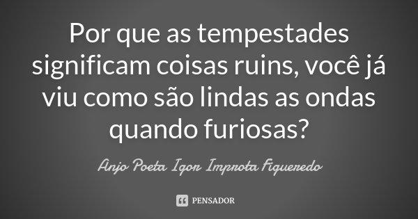 Por que as tempestades significam coisas ruins, você já viu como são lindas as ondas quando furiosas?... Frase de Anjo Poeta Igor Improta Figueredo.