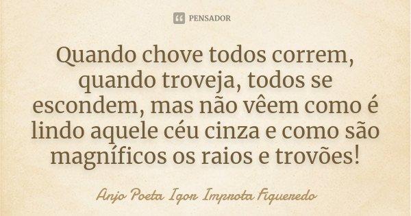 Quando chove todos correm, quando troveja, todos se escondem, mas não vêem como é lindo aquele céu cinza e como são magníficos os raios e trovões!... Frase de Anjo Poeta Igor Improta Figueredo.