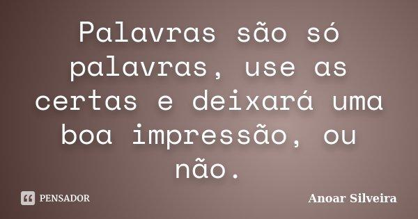 Palavras são só palavras, use as certas e deixará uma boa impressão, ou não.... Frase de Anoar Silveira.