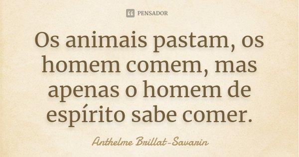 Os animais pastam, os homem comem, mas apenas o homem de espírito sabe comer.... Frase de Anthelme Brillat-Savarin.