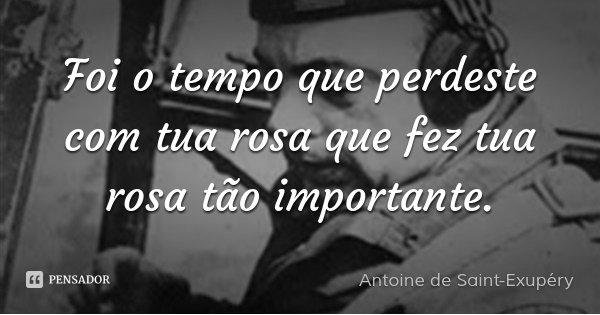Foi o tempo que perdeste com tua rosa que fez tua rosa tão importante.... Frase de Antoine de Saint-Exupéry.