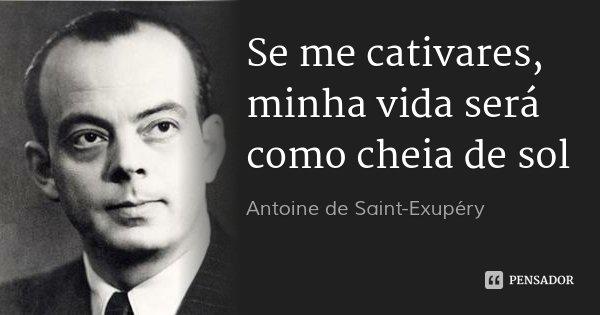 Se me cativares, minha vida será como cheia de sol... Frase de Antoine de Saint-Exupéry.