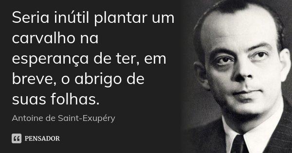 Seria inútil plantar um carvalho na esperança de ter, em breve, o abrigo de suas folhas.... Frase de Antoine de Saint Exupéry.