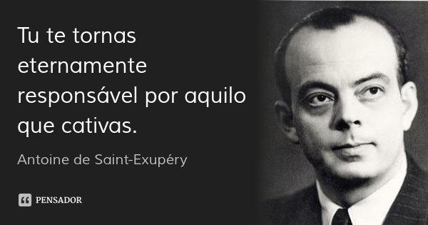 Tu te tornas eternamente responsável por aquilo que cativas.... Frase de Antoine de Saint-Exupéry.