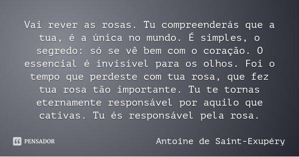 Vai rever as rosas. Tu compreenderás que a tua, é a única no mundo. É simples, o segredo: só se vê bem com o coração. O essencial é invisível para os olhos. Foi... Frase de Antoine de Saint-Exupéry.