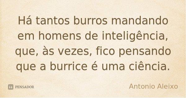 Há tantos burros mandando em homens de inteligência, que, às vezes, fico pensando que a burrice é uma ciência.... Frase de António Aleixo.