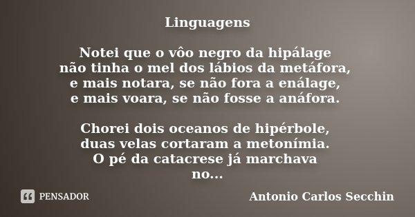 Linguagens Notei que o vôo negro da hipálage não tinha o mel dos lábios da metáfora, e mais notara, se não fora a enálage, e mais voara, se não fosse a anáfora.... Frase de Antonio Carlos Secchin.