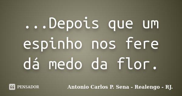...Depois que um espinho nos fere dá medo da flor.... Frase de Antonio Carlos P. Sena - Realengo - RJ..