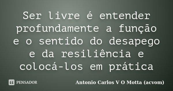 Ser livre é entender profundamente a função e o sentido do desapego e da resiliência e colocá-los em prática... Frase de Antonio Carlos V O Motta (acvom).