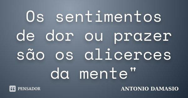 """Os sentimentos de dor ou prazer são os alicerces da mente""""... Frase de António Damásio."""