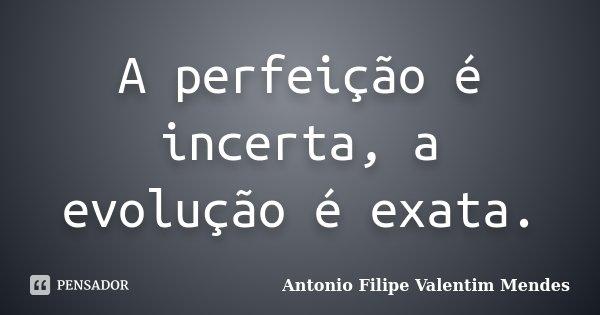 A perfeição é incerta, a evolução é exata.... Frase de Antonio Filipe Valentim Mendes.
