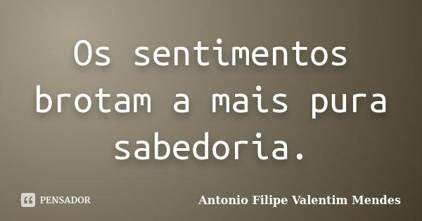 Os sentimentos brotam a mais pura sabedoria.... Frase de Antonio Filipe Valentim Mendes.