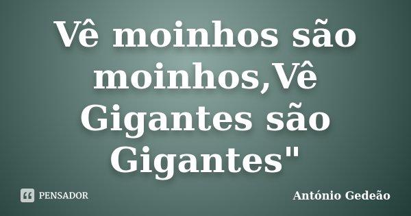 """Vê moinhos são moinhos,Vê Gigantes são Gigantes""""... Frase de Antônio Gedeão."""