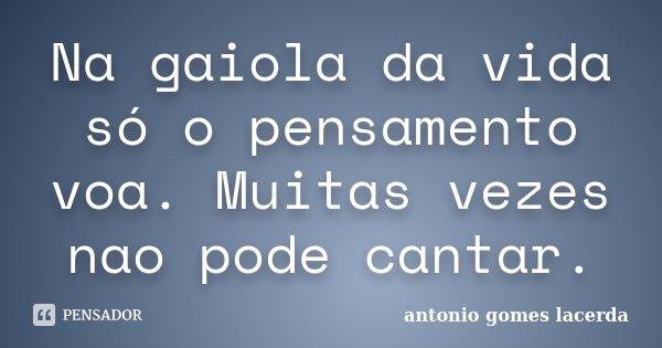 Na gaiola da vida só o pensamento voa. Muitas vezes nao pode cantar.... Frase de Antonio Gomes Lacerda.