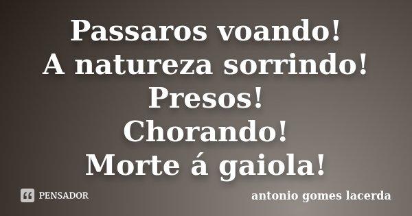 Passaros voando! A natureza sorrindo! Presos! Chorando! Morte á gaiola!... Frase de Antonio Gomes Lacerda.