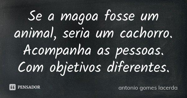 Se a magoa fosse um animal, seria um cachorro. Acompanha as pessoas. Com objetivos diferentes.... Frase de Antonio Gomes Lacerda.