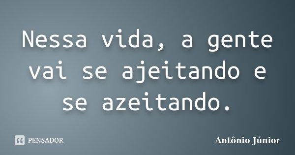 Nessa vida, a gente vai se ajeitando e se azeitando.... Frase de Antônio Junior.
