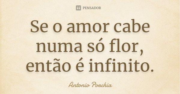 Se o amor cabe numa só flor, então é infinito.... Frase de Antonio Porchia.