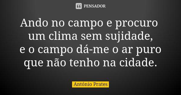 Ando no campo e procuro um clima sem sujidade, e o campo dá-me o ar puro que não tenho na cidade.... Frase de António Prates.