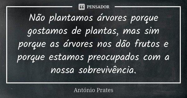Não plantamos árvores porque gostamos de plantas, mas sim porque as árvores nos dão frutos e porque estamos preocupados com a nossa sobrevivência.... Frase de António Prates.
