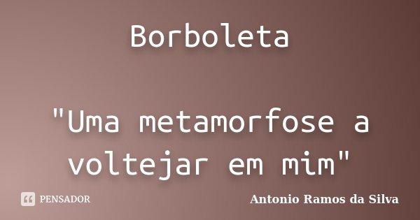 """Borboleta """"Uma metamorfose a voltejar em mim""""... Frase de Antonio Ramos da Silva."""
