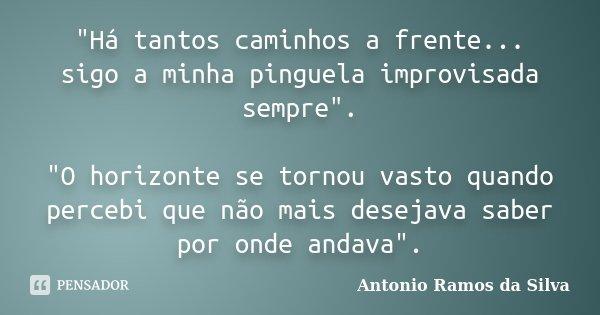 """""""Há tantos caminhos a frente... sigo a minha pinguela improvisada sempre"""". """"O horizonte se tornou vasto quando percebi que não mais desejava sabe... Frase de Antonio Ramos da Silva."""